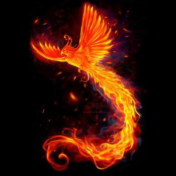 burning feather-350